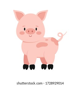 Cute pink pig with curly tail isolated on white background. Funny farm and domestic little pig icon. Flat design cartoon style vector animal character illustration.