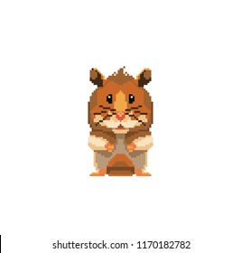 Cute pixel home mouse