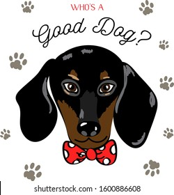 Cute placement engineered print with a vector illustration of a dapper preppy black dachshund dog puppy in a red bow tie with lettering words who's a good dog? surrounded by paw prints