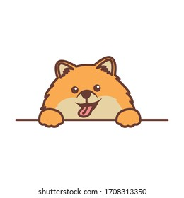 Cute pomeranian dog paws up over wall, vector illustration