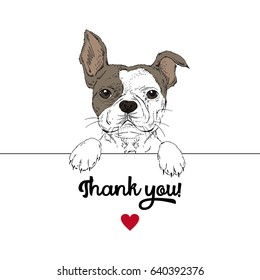 cute portrait of French bulldog, thank you poster