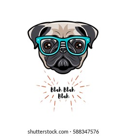 Cute portrait of nerdy Pug dog. Vector illustration isolated on white background