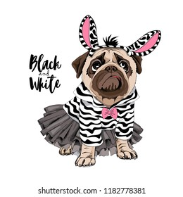 Cute Pug in a ballerina tutu, in a striped cardigan with a bow and in a zebra mask. Black and White - lettering quote. Humor card, poster, t-shirt composition, hand drawn vector illustration.