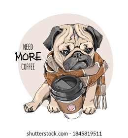 Cute Pug in the checkered scarf with a plastic cup of coffee. Humor card, t-shirt composition, hand drawn style print. Vector illustration.