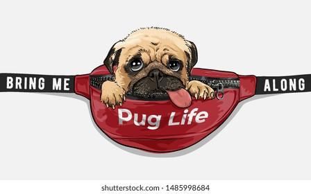 cute pug dog in red waist bag illustration