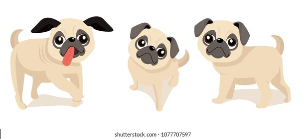 Cute pug dogs with many expression