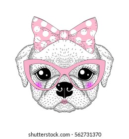 3911f277b Cute pug portrait with pin up bow tie , kat eyes glasses. Hand drawn dog