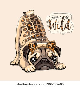 Cute Pug with a predator skin spots and  in a leopard mask on a beige background. Born to be wild - lettering quote. Humor card, poster, t-shirt composition, hand drawn vector illustration.