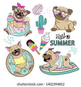 Cute pugs on summer collection on white background