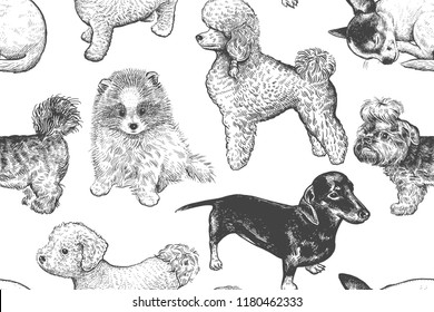 Cute puppies seamless pattern. Home pets background. Sketch. Vector illustration art. Realistic portraits of animal. Vintage. Black, white and blue hand drawing of dogs.