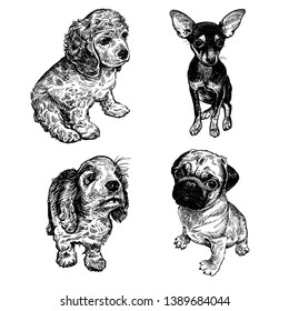 Puppy Draw Images, Stock Photos & Vectors | Shutterstock
