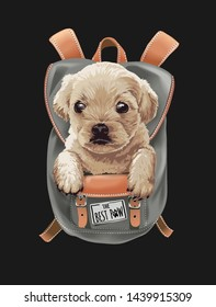 cute puppy in backpack illustration