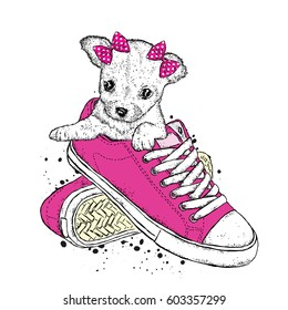 A cute puppy with a bows sits in sneakers. Vector illustration. Beautiful dog.