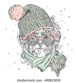 Cute puppy wearing a hat and sunglasses. Vector illustration for greeting card, poster, or print on clothes. Pedigree dog. Yorkshire Terrier. Winter, Christmas and New Year.