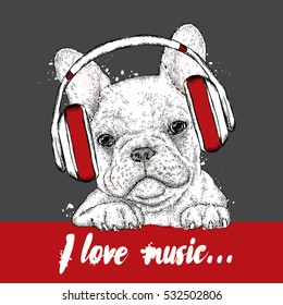 Cute puppy wearing headphones. Vector illustration for a card or poster. Print on clothes. French Bulldog. Pedigree dog.