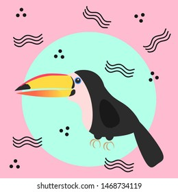 A cute and quirky toucan illustration. Vector illustration.