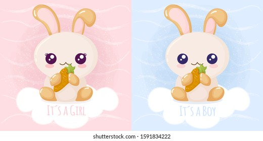 Cute rabbit it´s a girl it´s a boy. Vector illustration