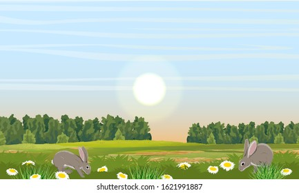 Cute rabbits on a spring meadow. Green trees, grass and white flowers with yellow centers. Camomile field. Realistic vector landscape