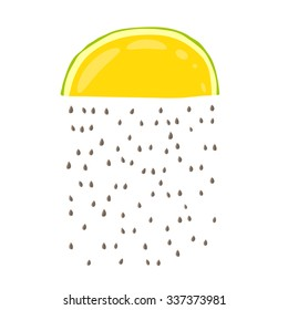 Cute rain from melon seeds. Vector illustration on white background drawn by hand.