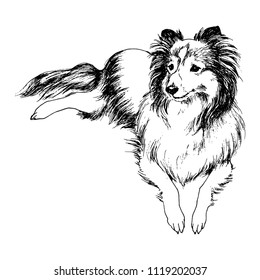 Dog Drawing Images Stock Photos Vectors Shutterstock