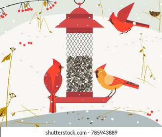 Cute Red Northern cardinal bird poster. Comic flat cartoon. Minimalism simplicity design. Winter birds feeding by sunflower seeds in feeder. Template birdwatching card background. Vector illustration