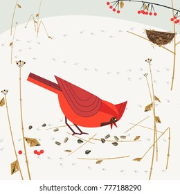 Cute Red Northern cardinal birds poster. Comic flat cartoon. Minimalism simplicity design. Winter male bird feeding by seeds in snow near nest. Template vector scavenging birdwatching card background