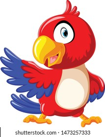 cute red parrot cartoon with presentation