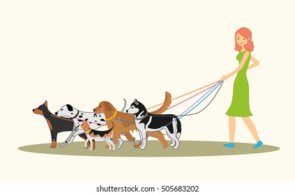 Cute red-haired girl walking many dogs of different breeds. Vector illustration of dog walker.