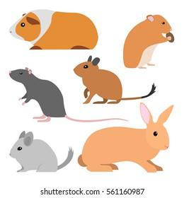 Cute rodents, vector pet isolated small domestic animals cartoon style. pet cavy, hamster, rat, degu, chinchilla, rabbit illustration. cartoon rodent pets. animal flat design. Cartoon animal art.