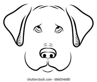Cute sad puppy dog