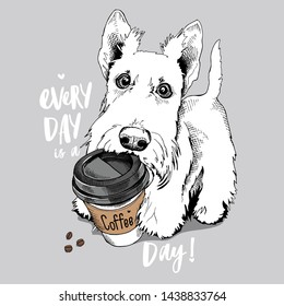 Cute Scottish Terrier puppy with a plastic cup of coffee. Every day is a coffee day - lettering quote. Humor card, t-shirt composition, hand drawn style print. Vector illustration.