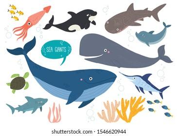 Cute sea animals set. Underwater animal creatures. Squid, orca, whale, shark, dolphin, swordfish and ocean turtle. Undersea world. Cartoon vector illustration isolated on white. Flat style.