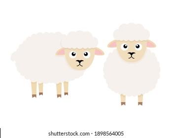 Cute sheep character. Cartoon farm animal. Vector illsutration isolated on white