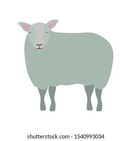 cute sheep manger animal character vector illustration design