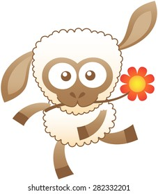 Cute sheep with white wool, brown skin and bulging eyes while swinging animatedly and holding a red flower with its mouth