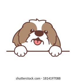 Cute shih tzu dog paws up over wall, vector illustration