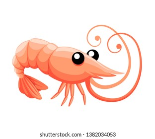 Cute shrimp. Cartoon animal character design. Swimming crustaceans. Flat vector illustration isolated on white background