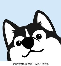 Cute siberian husky dog face, vector illustration