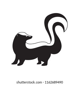 Cute Skunk Vector