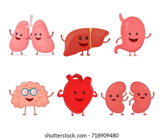 Cute smiling happy human healthy strong organs set. Vector modern style cartoon character illustration icon design. Isolated on white background. Heart, liver, brain, stomach, lungs, kidneys organ