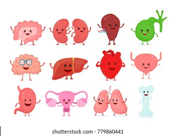 Cute smiling happy human healthy strong organs set. Vector cartoon character illustration icon design. Isolated on white background. Heart, liver, brain, stomach, lungs, kidneys,intestine,uterus organ