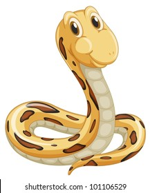 Cute snake on a white background