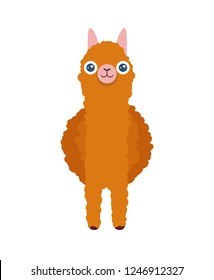 Cute south american Alpaca in front - Vector cartoon illustration of Lama for posters and greating cards.