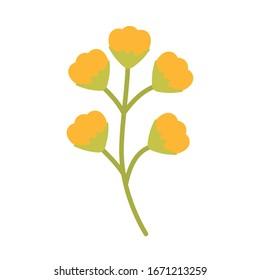 cute spring flower on white background vector illustration design