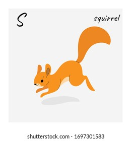 Cute squirrel - cartoon animal character. Vector illustration in flat style isolated on gray background.