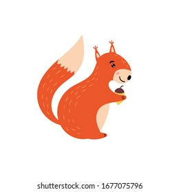 Cute squirrel. A cheerful squirrel smiles and holds a nut in its paws. Children's animal character. Vector editable illustration