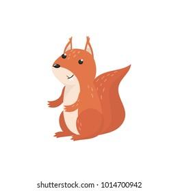 Cute squirrel woodland cartoon animal vector Illustration