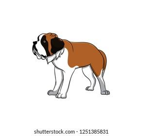 Cute St Bernard Cartoon Dog. Vector illustration of purebred st bernard dog.