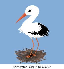 Cute stork on a nest