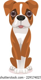 Cute Straight Standing Pure Breed Brown and White Boxer front view, check my other dog breeds.